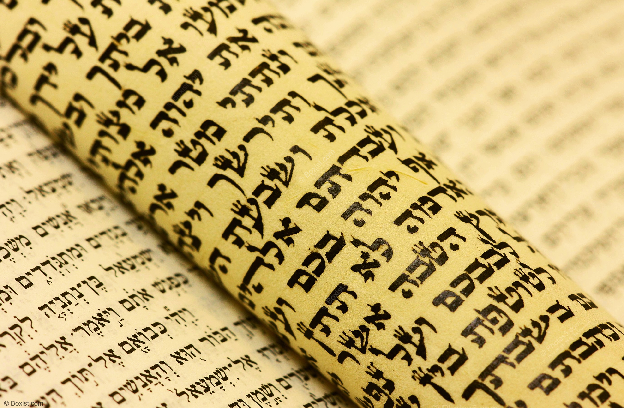 Jewish Hebrew Scroll From the Torah Bible